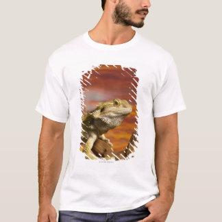 T-shirt Dragon barbu (Pogona Vitticeps) sur la branche,