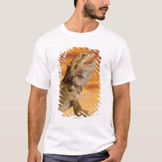 T-shirt Dragon barbu (Pogona Vitticeps) sur la roche,