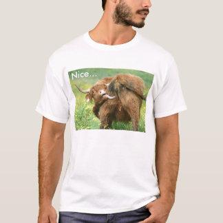T-shirt drôle de vache d'Aberdeen Angus