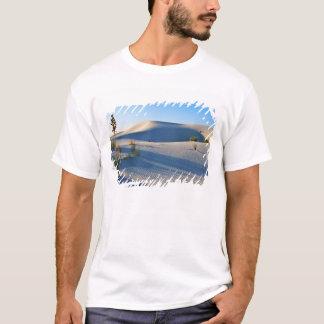 T-shirt Dunes transversales, yucca, lumière de début de la