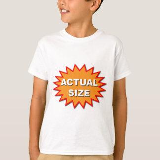 T-shirt échelle grandeur