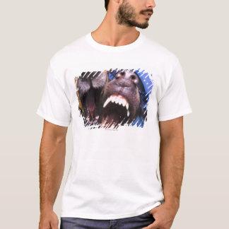 T-shirt Écorcement de chiens