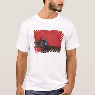 T-shirt Écouteurs de port de Labrador se trouvant sur le