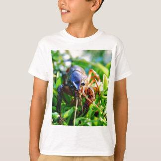 T-shirt Écrevisses de Crawdads d'écrevisses