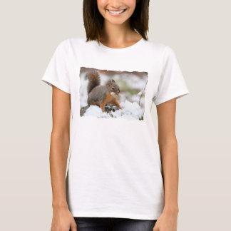 T-shirt Écureuil mignon dans la neige avec l'arachide