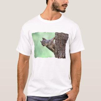 T-shirt Écureuil sur un arbre