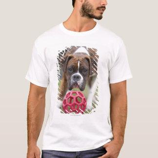 T-shirt Edmonton Alberta Canada