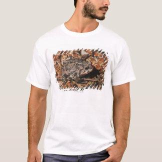 T-shirt Edmonton, Alberta, Canada 3