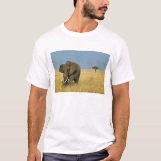 T-shirt Éléphant africain frôlant dans l'herbe grande