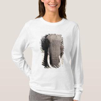 T-shirt Éléphant (africana de Loxodonta), camp 3 d'Abu