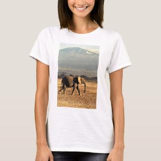 T-shirt Éléphant devant Kilimanjaro