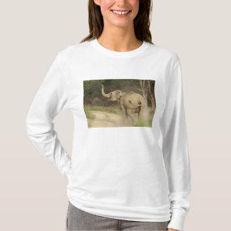 T-shirt Éléphant indien/asiatique communiquant, Corbett