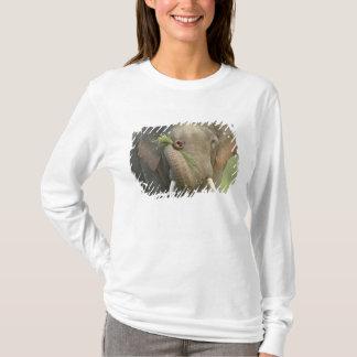 T-shirt Éléphant indien/asiatique montrant la nourriture,