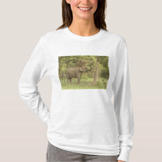 T-shirt Éléphant indien/asiatique prenant le bain de la