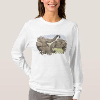 T-shirt Éléphants indiens/asiatiques jouent le combat,