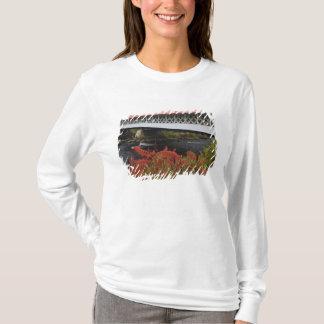 T-shirt enjambement de pont couvert d'Ashuelot de 159