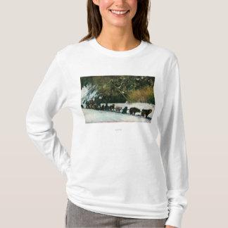 T-shirt Équipe de chien du Yukon transportant par le