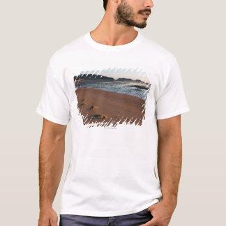 T-shirt Étapes dans les sables au lever de soleil