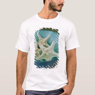 T-shirt Étoiles de mer dans la cuvette