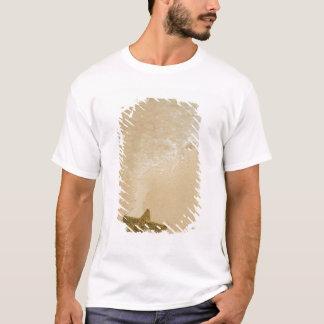 T-shirt Étoiles de mer sur la plage sablonneuse, terre de