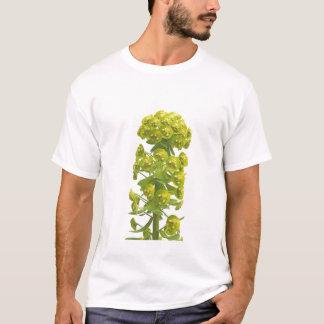 T-shirt Euphorbe