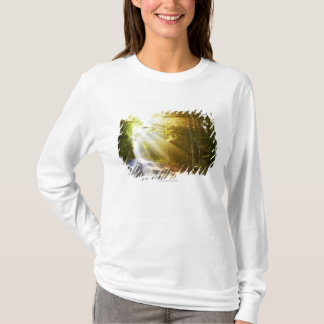 T-shirt Faisceaux de Sun par la forêt en parc national