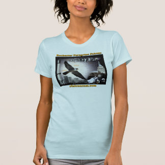 T-shirt Falcons pérégrins de Rochester