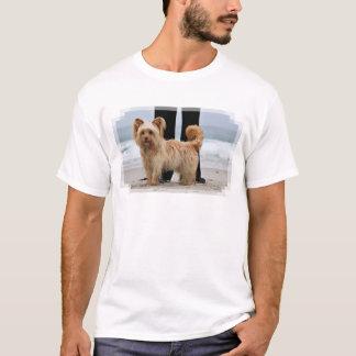 T-shirt Farris - Lucy - race mélangée