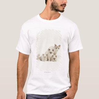 T-shirt Femelle de chat de Ragdoll avec des chatons