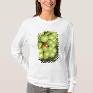 T-shirt Fermez-vous de l'insecte de dame sur les raisins