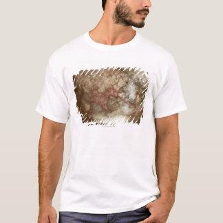 T-shirt Fermez-vous du globe antique 2