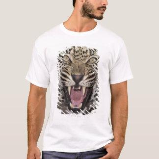 T-shirt Fermez-vous du léopard grognant