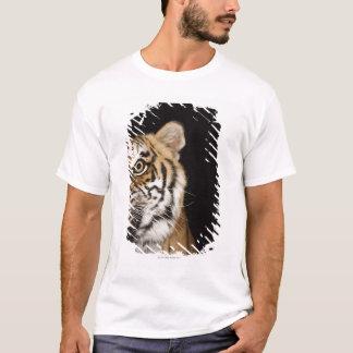 T-shirt Fermez-vous du visage du tigre d'hurlement