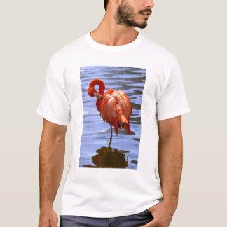 T-shirt Flamant sur une jambe dans l'eau
