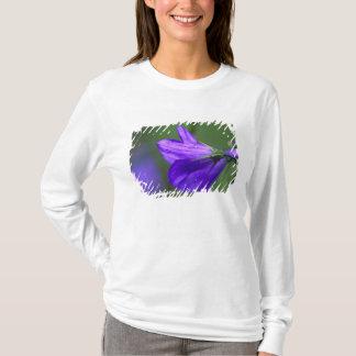 T-shirt Fleur de jacinthe des bois dans le passage de