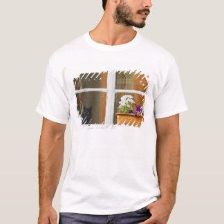 T-shirt Fleurissez par la fenêtre, Sighisoara, Roumanie