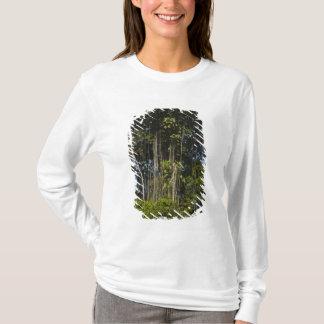 T-shirt Forêt tropicale Guyane de bord de rivière de Rewa
