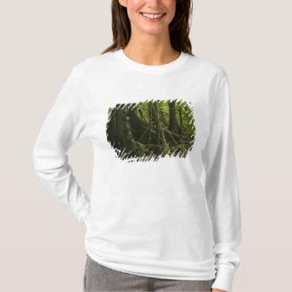 T-shirt Forêt tropicale, rivière Rupununi du nord de