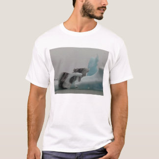 T-shirt Formations d'iceberg