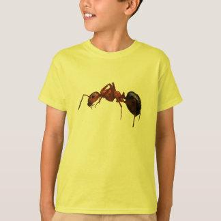 T-shirt Fourmi de feu