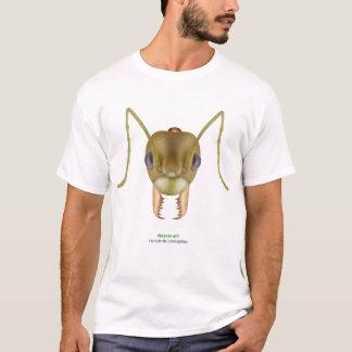 T-shirt Fourmi de tisserand