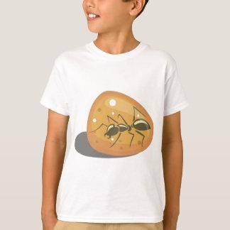 T-shirt Fourmi en ambre