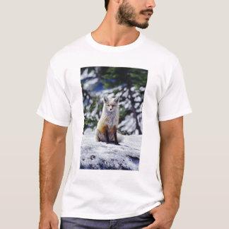 T-shirt Fox rouge se reposant sur la banque de neige,