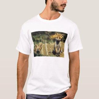 T-shirt Fox rouge, vulpes de Vulpes, jeune au repaire,