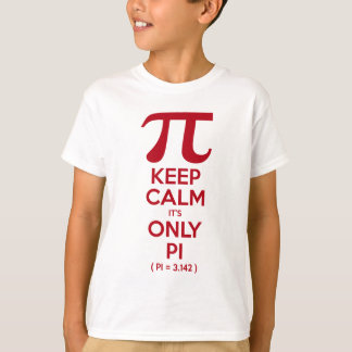 T-shirt Gardez le calme que c'est seulement pi