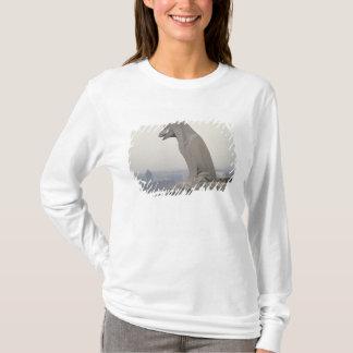 T-shirt Gargouille sur la balustrade du grand
