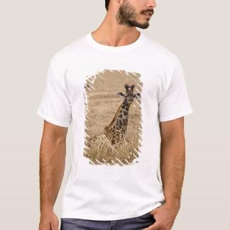 T-shirt Girafe de masai, camelopardalis de Giraffa, se