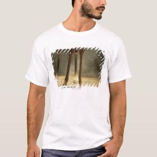 T-shirt Girafe de masai, vue d'angle faible des jambes,