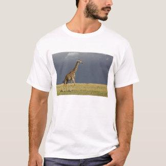 T-shirt Girafe et ciel orageux, camelopardalis de Giraffa