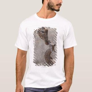 T-shirt Girafe, Kenya, Afrique